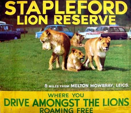 Stapleford Lion Reserve